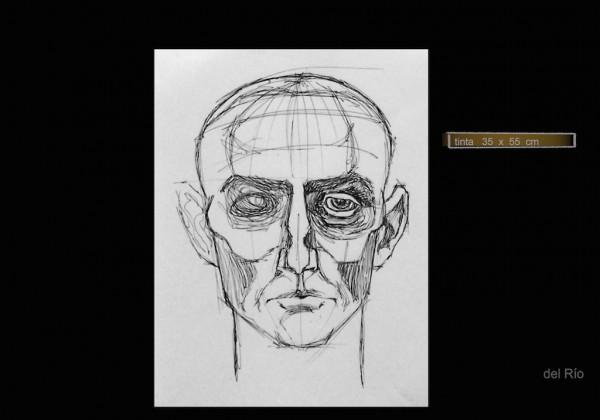 estudio rostro